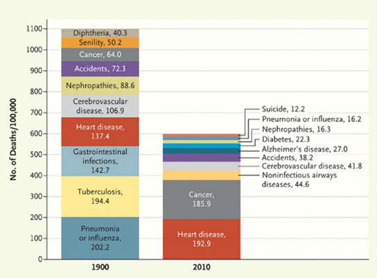 Causes of death top ten 1900-2012