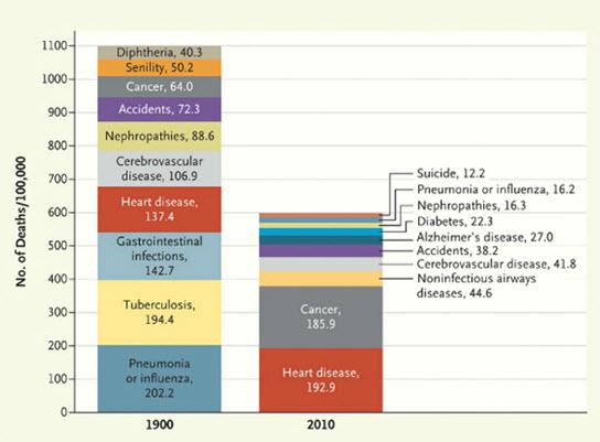 Causes of death top ten 1900-2012