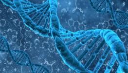 Cell DNA 700 KB Dollarphotoclub_58062355