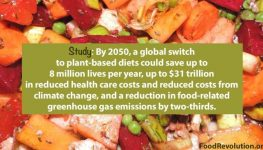 Food revolution benefits of dietary change