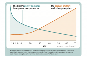 neuroplasticity as we age
